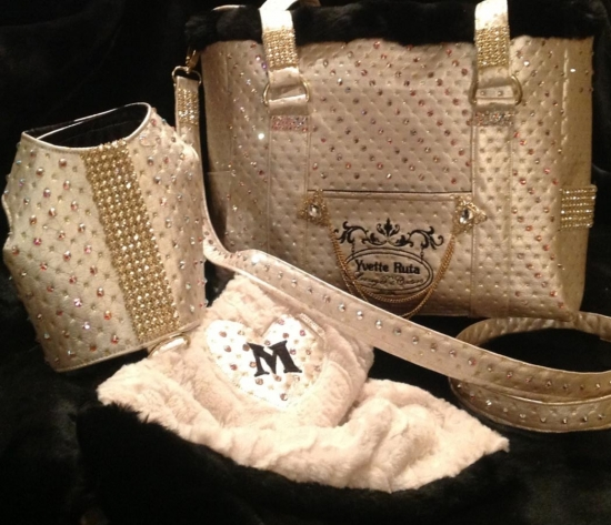 The Champagne Pet Carrier