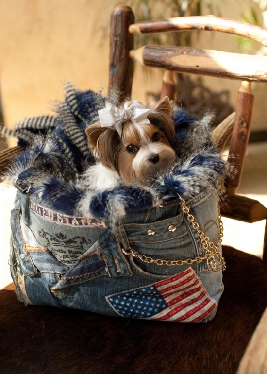 United States Pet Carrier