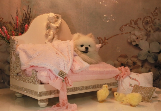 Custom Swarovski Bed