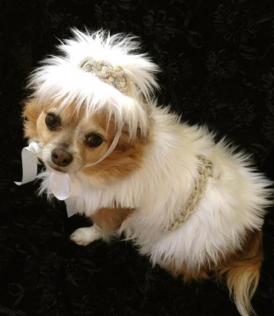 Hayley Fur Hat