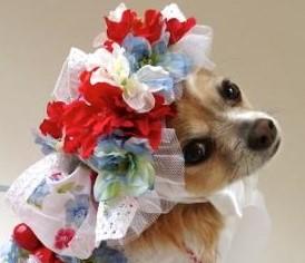 Patriotic Shabby Hat